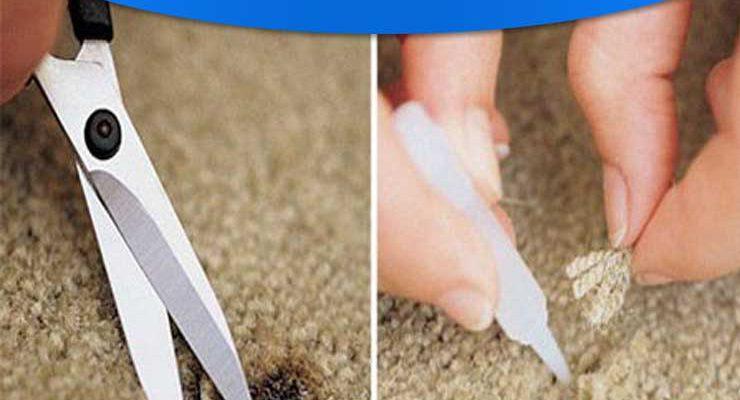 رفع سوختگی فرش و موکت